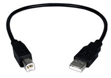 1ft USB 2.0 High-Speed Type A Male to B Male Black Cable CC2209C-01 037229228656 Cable, USB 2.0 480Mbps Certified Universal Serial Bus Type A Male to B Male Black Cable, For Printer, Scanner, Camera, External Drive & PC/Hub, 1ft CC2209C-01T   164509 TW8088 CC2209C01 CC2209C-01  cables feet foot   2450 IMCE microcenter Edward Matthews Approved
